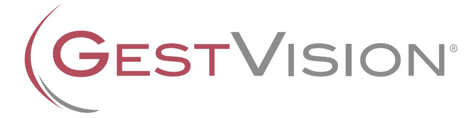 GestVision